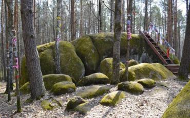 Гігантські об'єкти в українському лісі спантеличили вчених