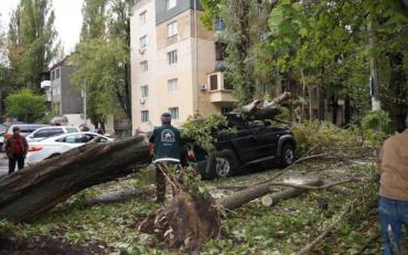 У мережі з'явилися фото вулиць після шторму в Одесі