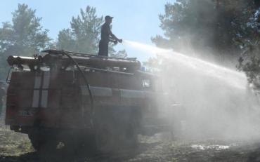 У Херсонській області розпочалася лісова пожежа