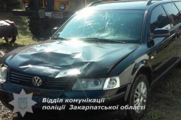 23-летний водитель мопеда находился в состоянии алкогольного опьянения