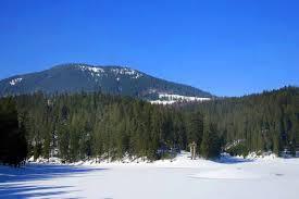 Справжня зимова краса