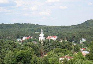 Віктору Ющенку передали звернення про рейдерське захоплення землі в селищі Брюховичі біля Львова