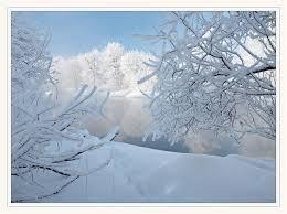 На Закарпатті справжня зима