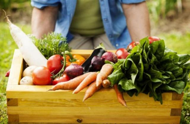 Наприкінці місяця українців очікує чергова хвиля подорожчання овочів 873d357b853d8