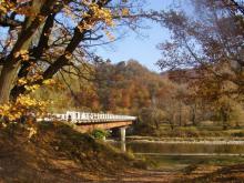 Невицкое - мост через Уж