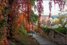 Панорама Ужгорода с замковой лестницы